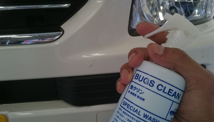 bugs-clean3