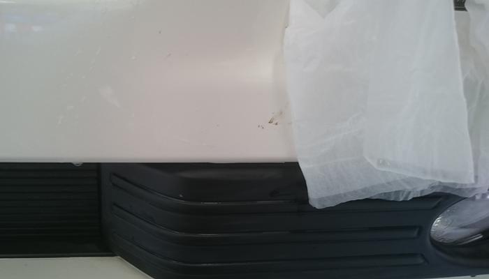 bugs-clean7